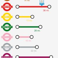 Underground Whole Graphic